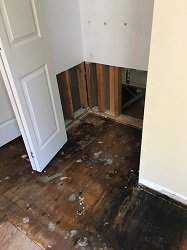 Water Damaged Floorboards