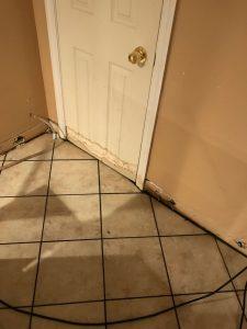 Mold Damage Near Front Door