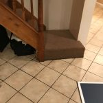 Stairs with Water Damage In Rug